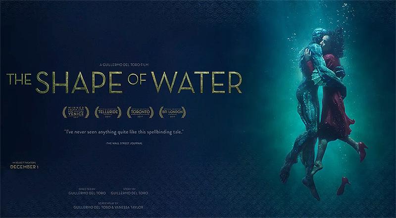 A Forma da Água - Blog Pedrazzini